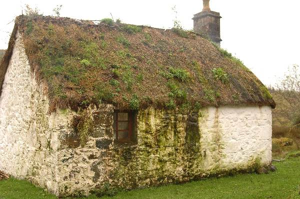 Scottish Thatching